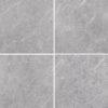 Genesis Platinum matt 600×600 face