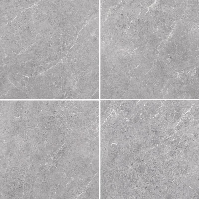Genesis Platinum matt 600x600 face