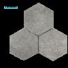 hexagon_cenere_chp